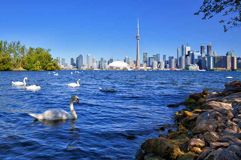 Why Live in Toronto